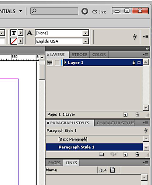 Adobe InDesign - Newly-Created Paragraph Style